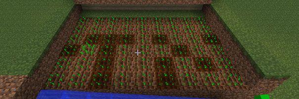 Plantação Minecraft
