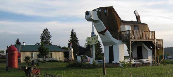 O hotel cachorrinho parece um beagle gigante.