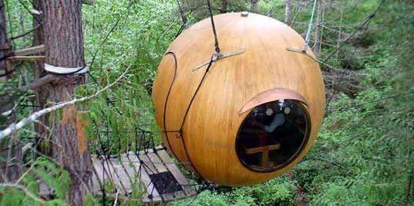 O hotel capsula na árvore é muito diferente.