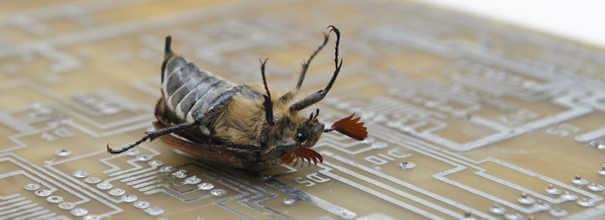 Um bug em uma placa de computador.