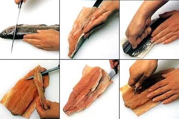O passo a passo da retirada das espinhas de peixe